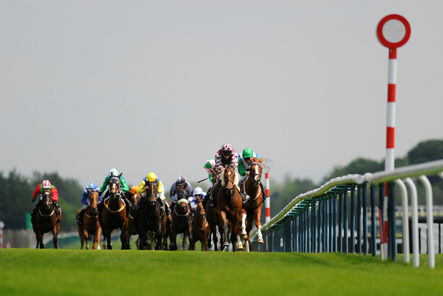 PREVIEW: Ascot King George Day - https://www starsportsbet co uk