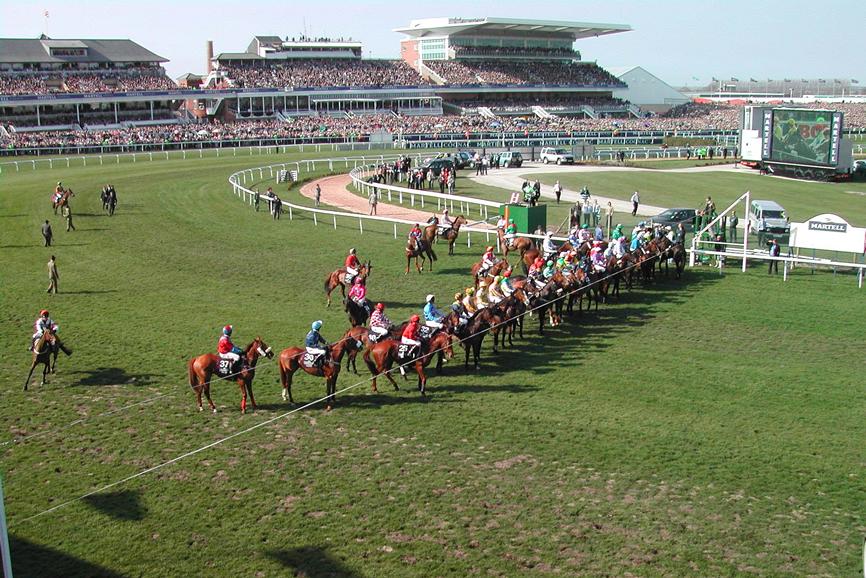 Each way bet sportsbettingstar cs go betting loss of pet